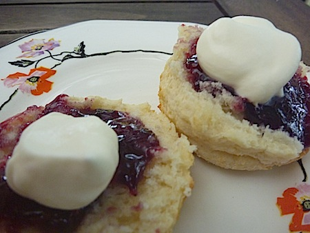 Buttermilk scones  with jam and cream on plate