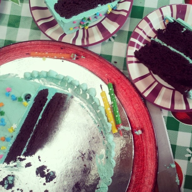 Celebration Cakes Ina Gartens Chocolate Cake With Swiss Buttercream Icing The Back Yard Lemon Tree