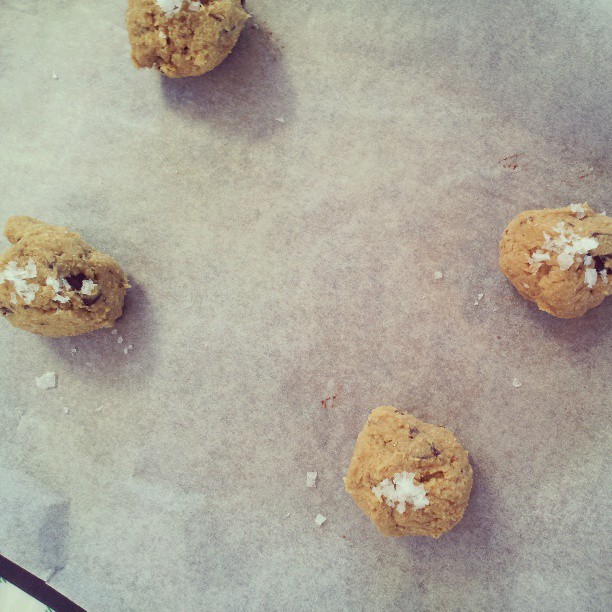 Wholemeal chocolate chip cookie dough