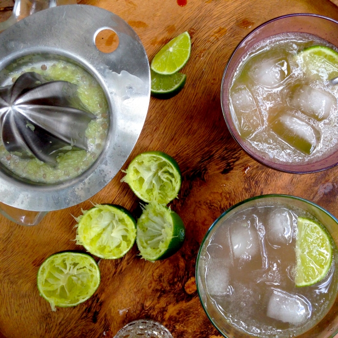 Lime Rickey - Soda, lime and bitters recipe.