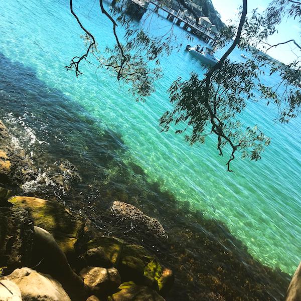 Balmoral Beach - Toronga walk Sydney
